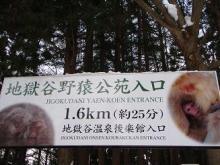 $四国ライオンアドベンチャースタッフブログ